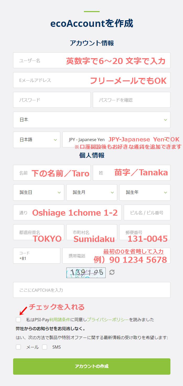 ecoPayzのアカウント登録画面のスクリーンショットに入力例を記載した画像(PC)