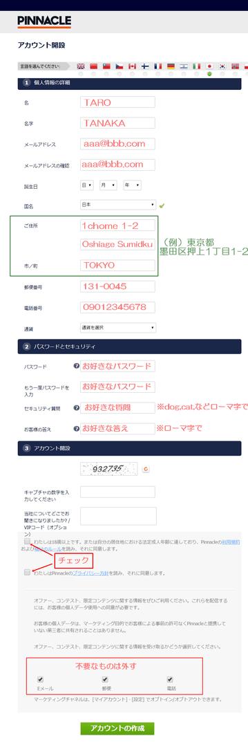pinacleのアカウント登録画面のスクリーンショットに赤字で入力例を示した画像