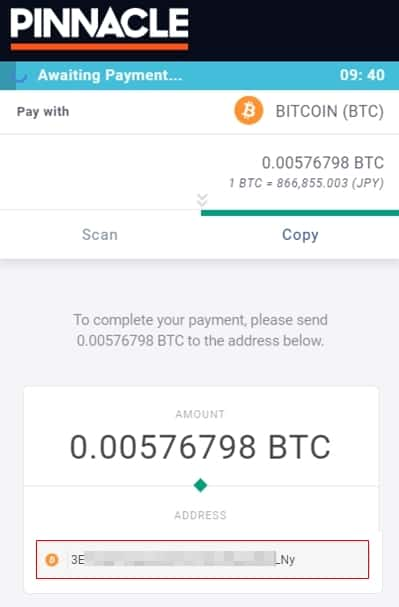 Pinacleのビットコインアドレスの表示画面