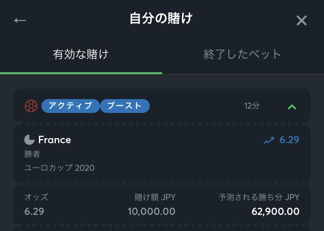 EURO2020のフランス優勝(6.29倍)に1万円を賭けたSportsbet.ioでの明細のスクリーンショット